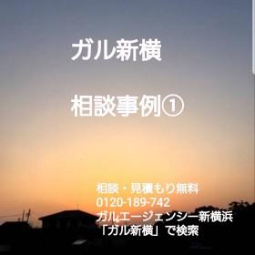 S__20791463