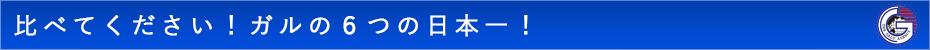 比べて下さい ガルの6つの日本一